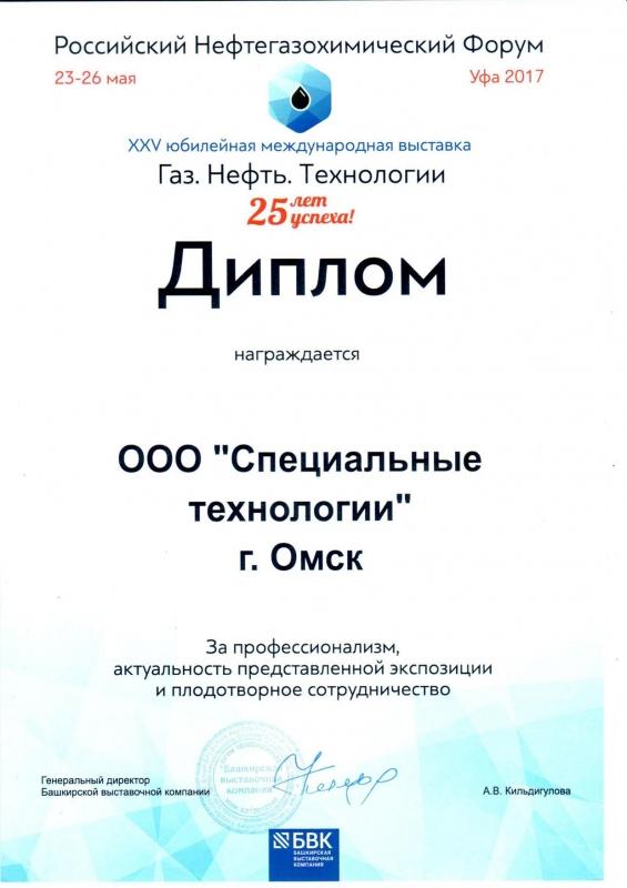 Дипломы Диплом участника Уфа 2017